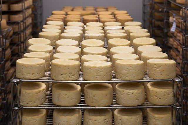 製造業cheese-5125021_640